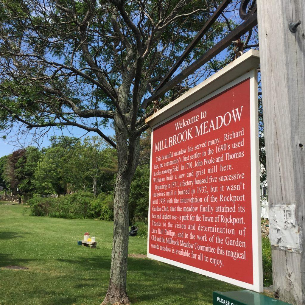 Millbrook Meadow
